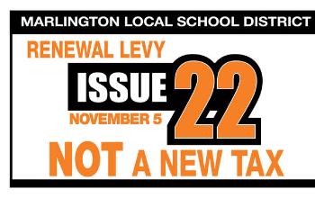 November Renewal Levy Information